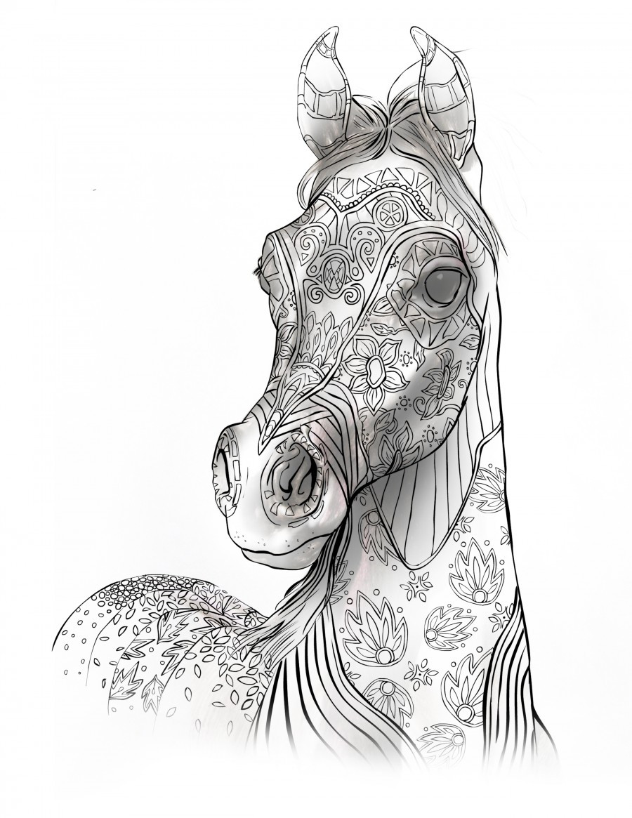 Adult Coloring Pages Horses  Coloring Books For Adults For Horse Lovers – The Magical
