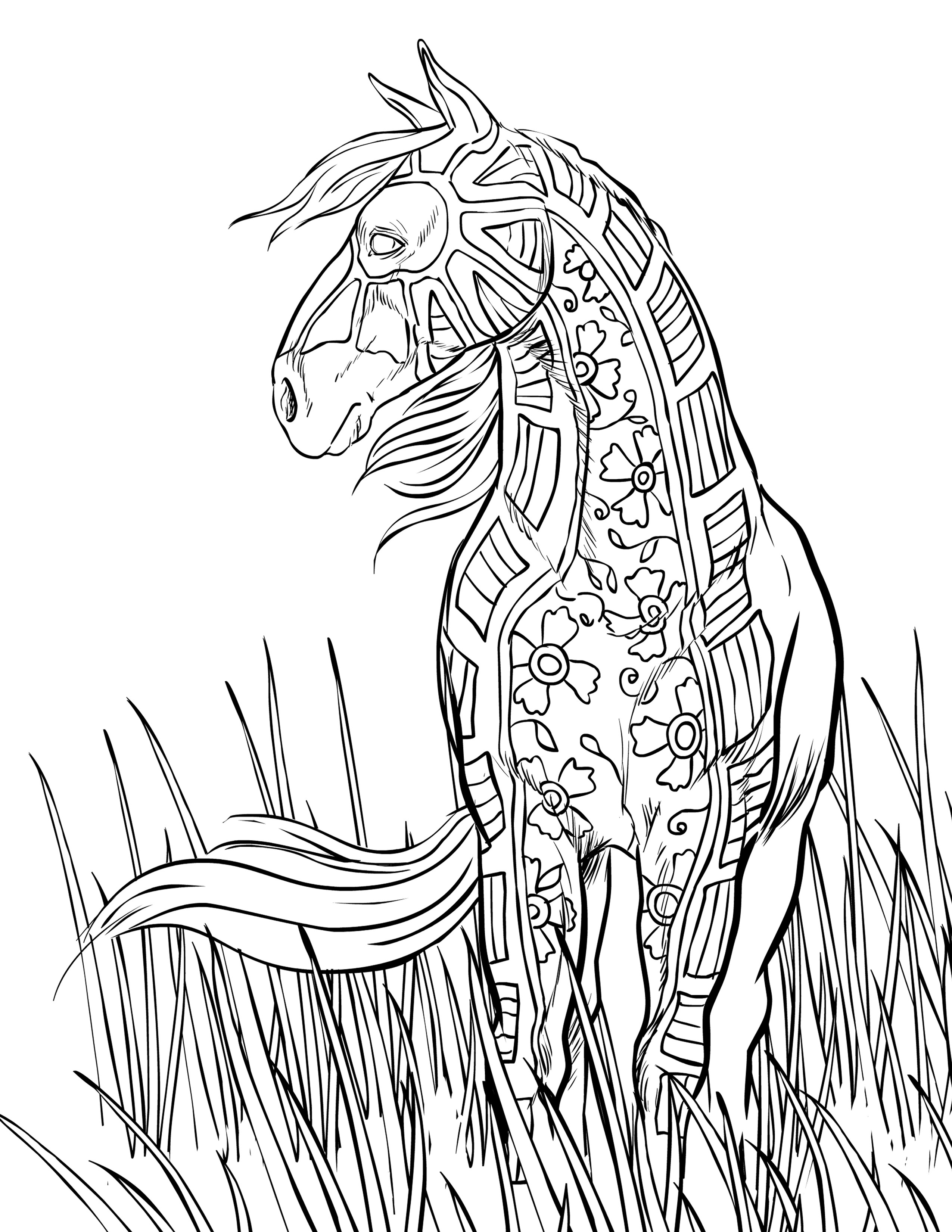 Adult Coloring Pages Horses  FREE HORSE COLORING PAGES