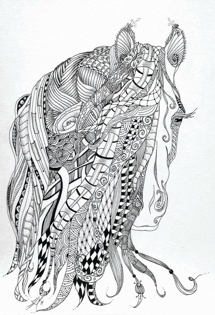 Adult Coloring Pages Horses  85 best images about Colouring Pages on Pinterest