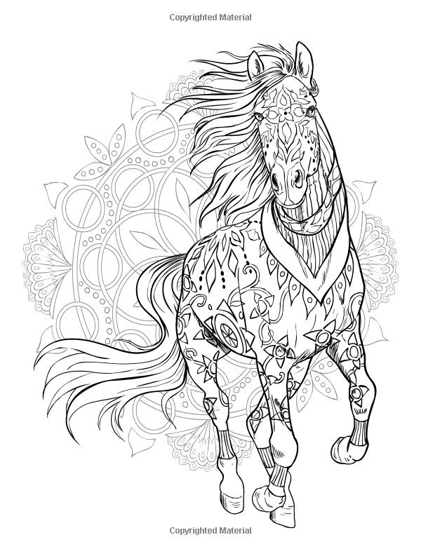 Adult Coloring Pages Horses  Pin by grammy fran on HORSES