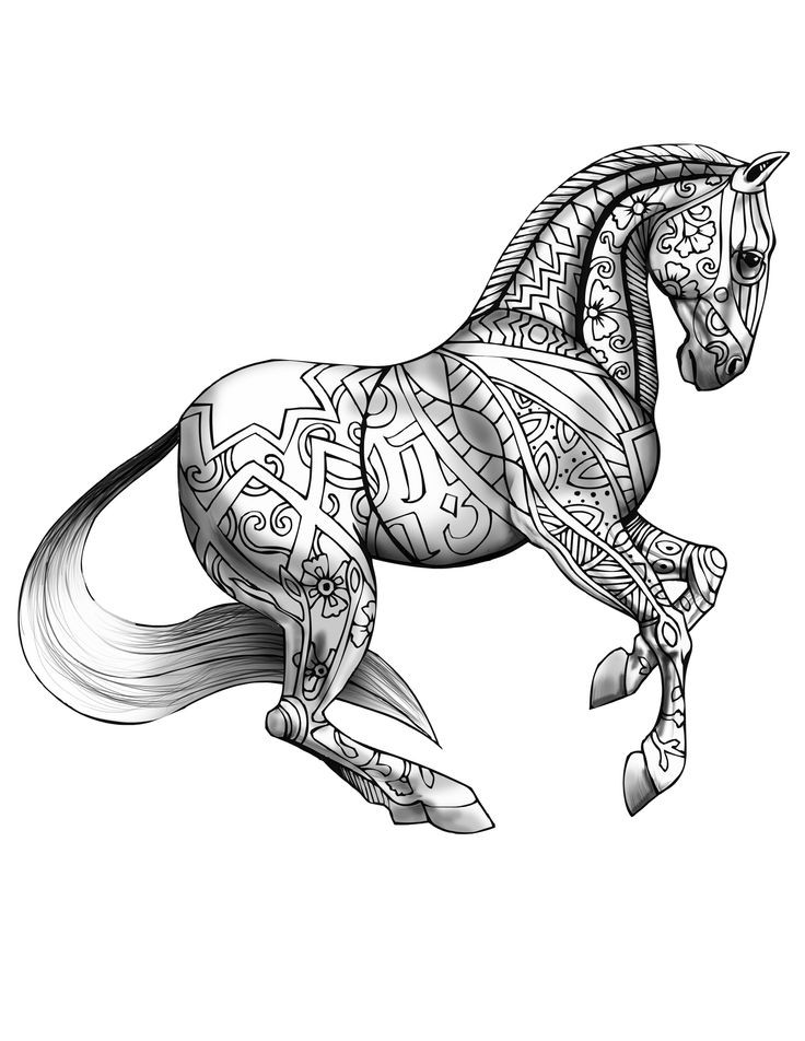 Adult Coloring Pages Horses  1055 best images about Adult Coloring Book on Pinterest