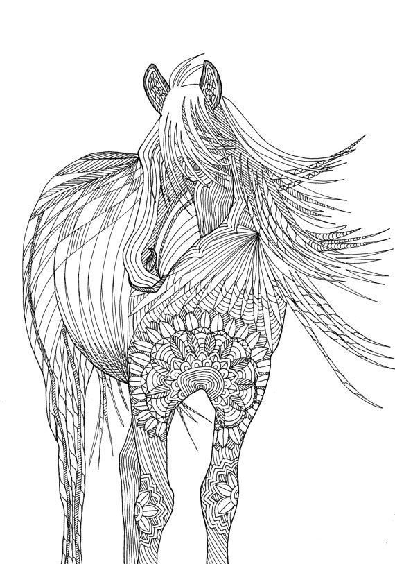 Adult Coloring Pages Horses  25 best ideas about Horse coloring pages on Pinterest
