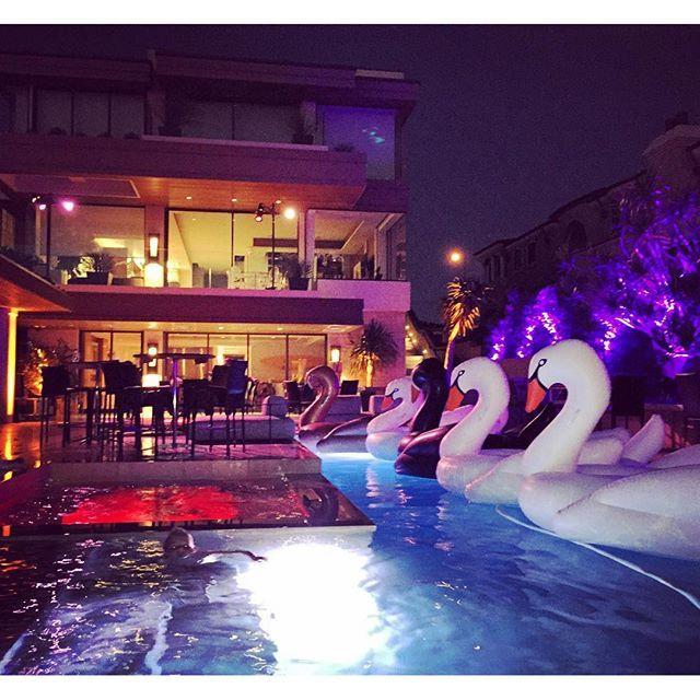 All White Pool Party Ideas  White Swan Pool Float