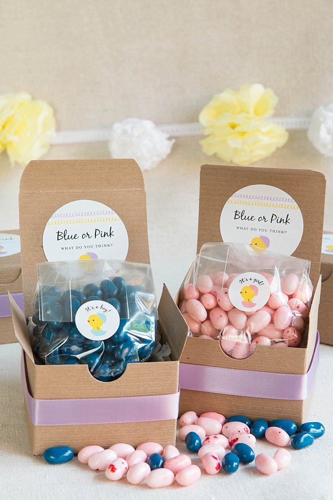 Baby Reveal Gift Ideas  Gender Reveal Treat Boxes Party Inspiration