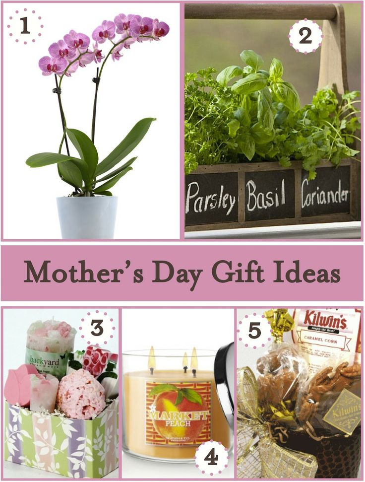 Best Mother Day Gift Ideas  17 Best ideas about Unusual Mothers Day Gifts on Pinterest