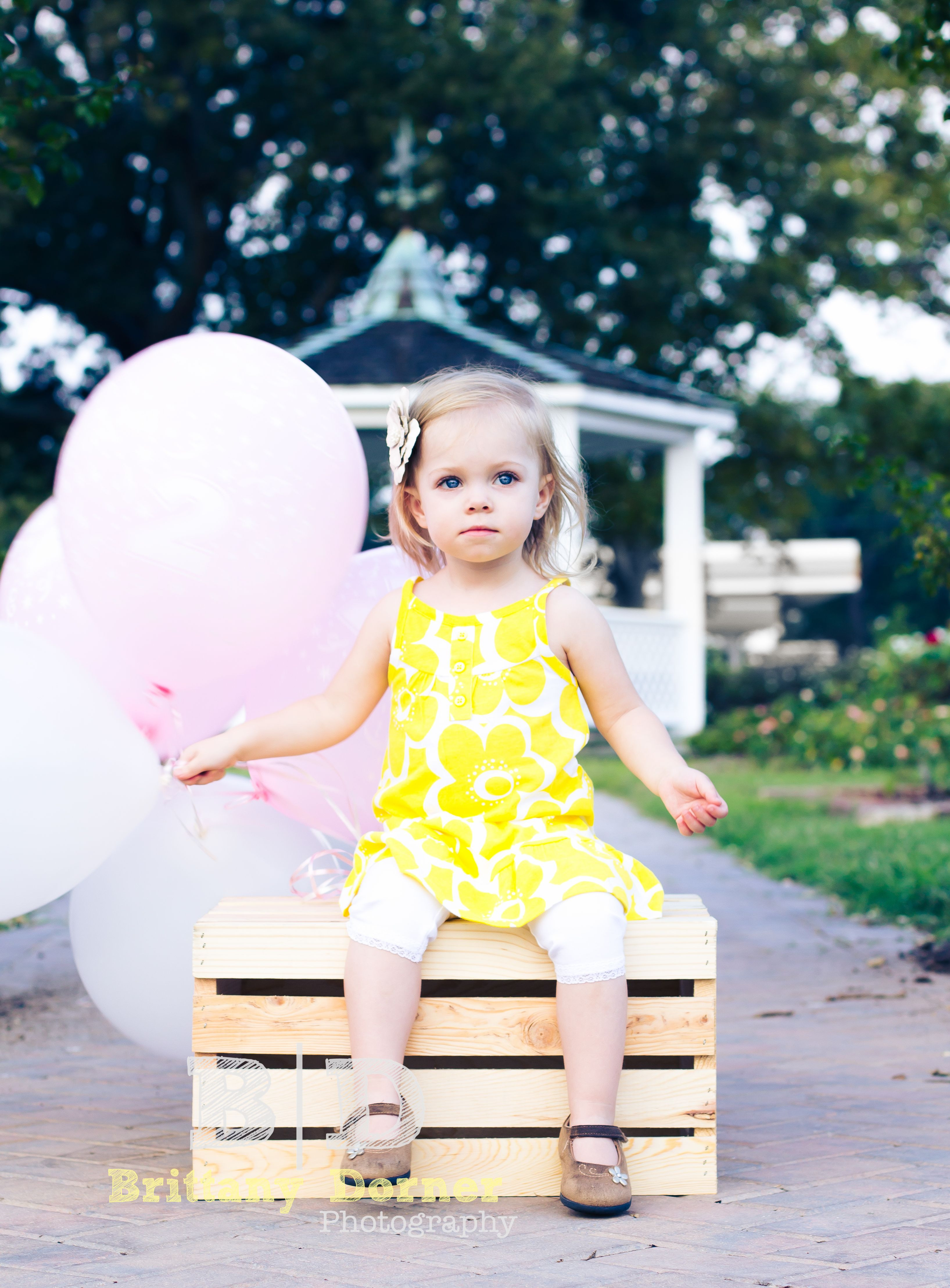 Birthday Gift Ideas For 2 Year Old Baby Girl  Cute Birthday shoot ideas Balloons Two year old