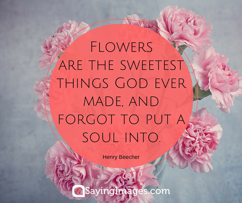 Birthday Quotes With Flowers  42 Beautiful Flower Quotes