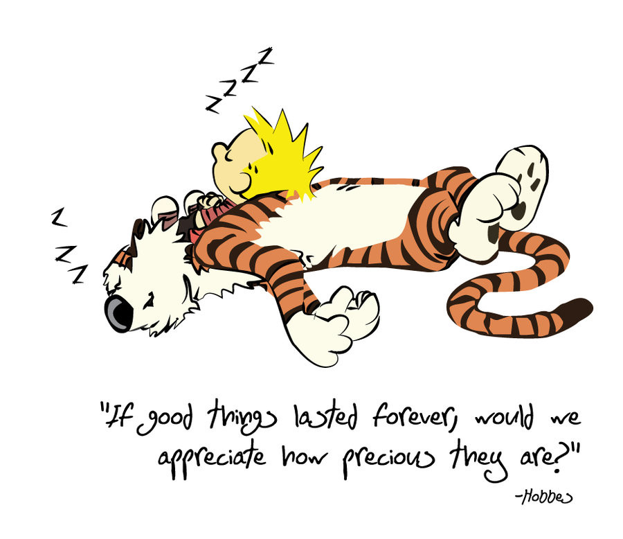 Calvin And Hobbes Birthday Quotes  Calvin And Hobbes Birthday Quotes QuotesGram