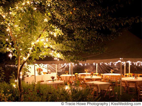 Cheap Backyard Party Ideas  Best 25 Cheap backyard wedding ideas on Pinterest