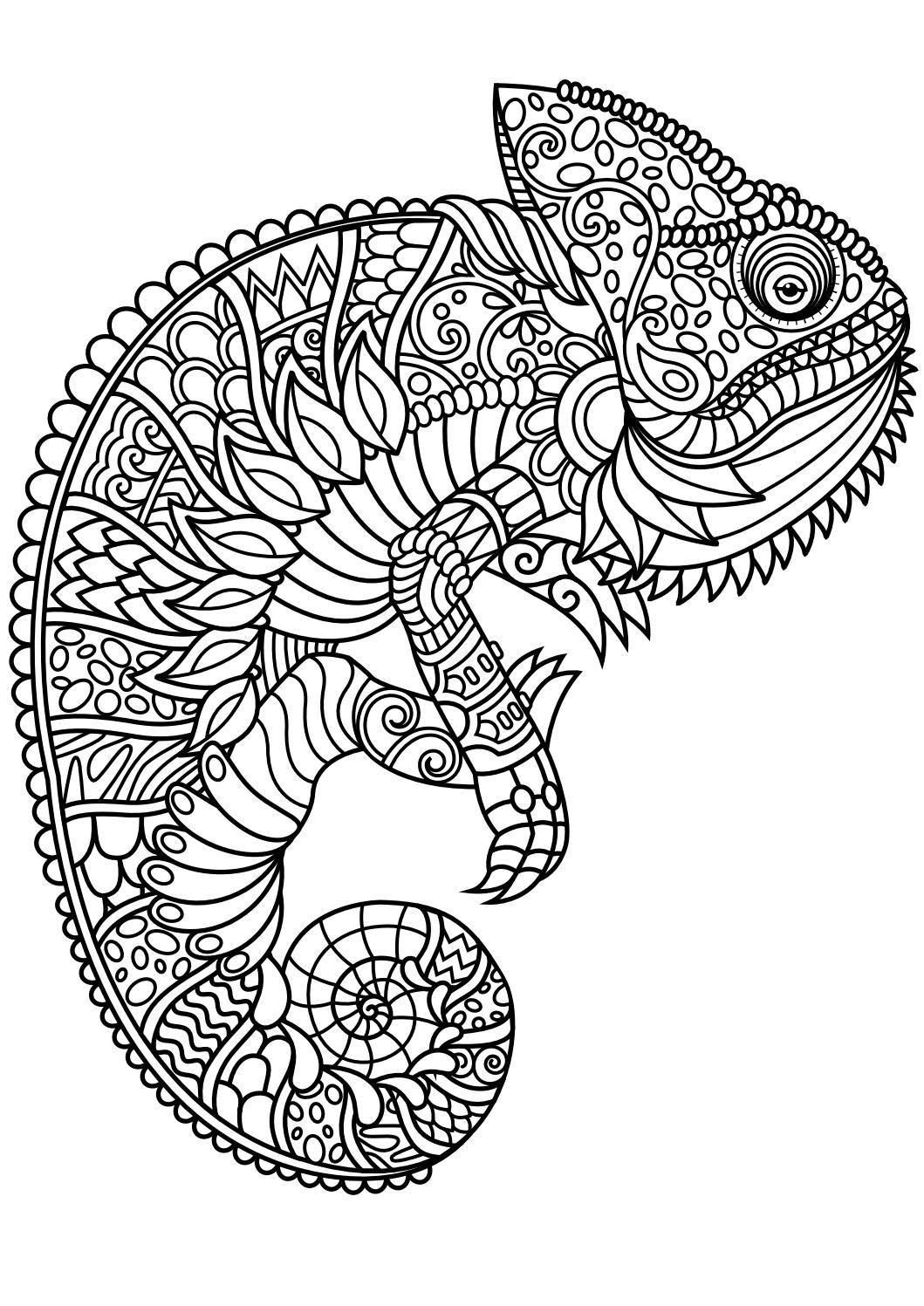 Coloring Book For Kids Pdf  Animal coloring pages pdf Coloring Animals