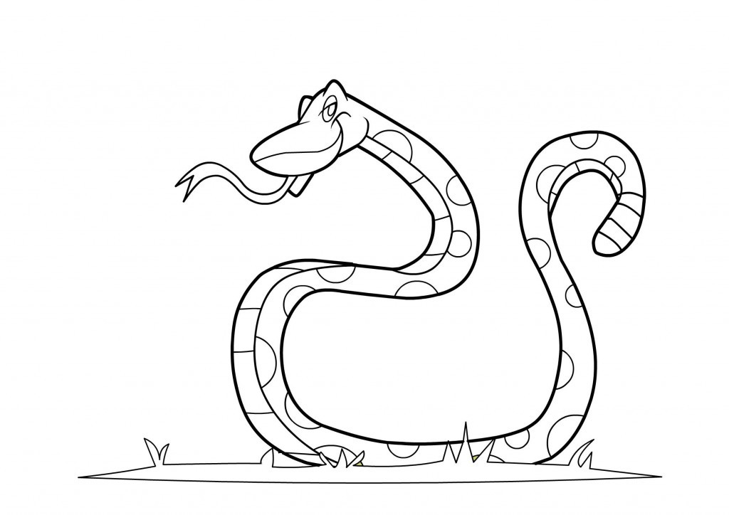 Coloring Pages For Toddler  Free Printable Snake Coloring Pages For Kids