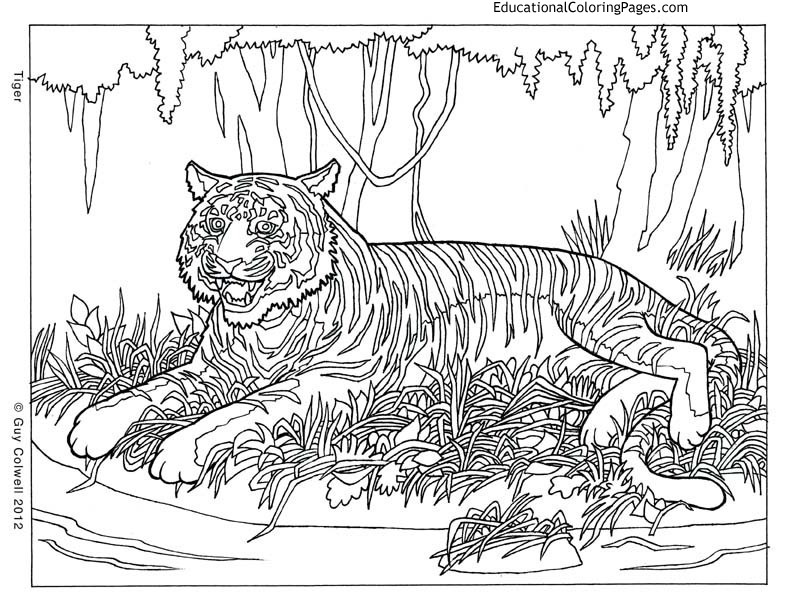 Cool Coloring Pages Boys Hard  Cool Coloring Pages Bestofcoloring