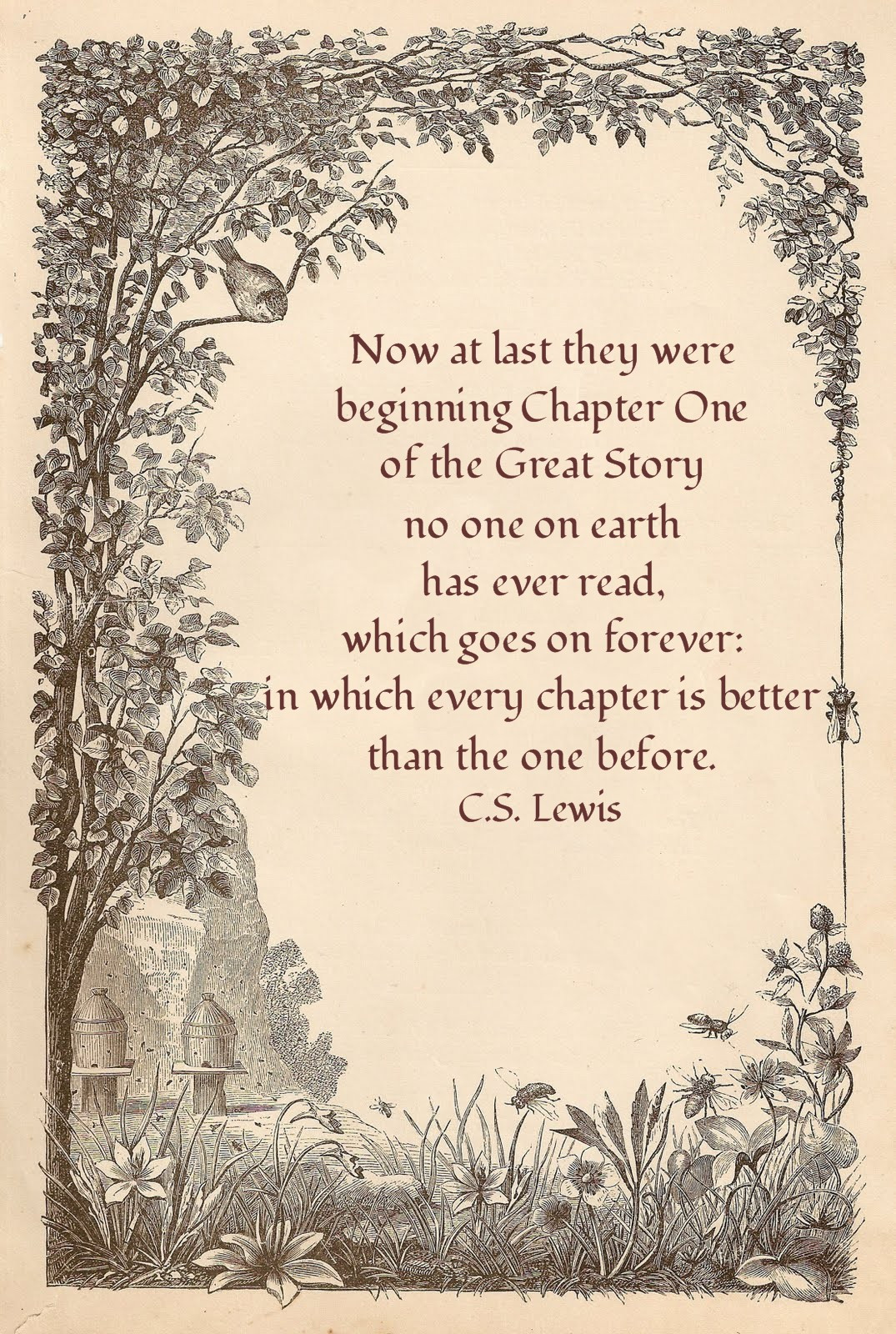Cs Lewis Quotes On Marriage  Little Bir Blessings Eternal Destination