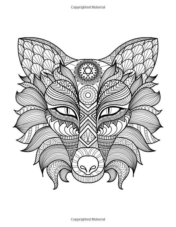 Cute Animal Coloring Pages For Adults  Predators Coloring Book A Stress Management Coloring Book