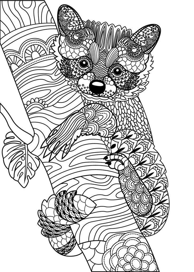 Cute Animal Coloring Pages For Adults  809 best Animal Coloring Pages for Adults images on