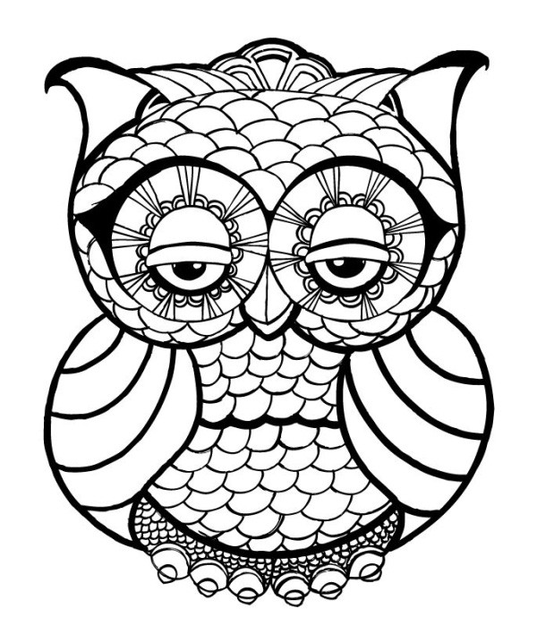 Cute Coloring Pages For Adults  OWL Coloring Pages for Adults Free Detailed Owl Coloring