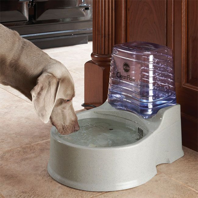 DIY Automatic Dog Waterer  25 Best Ideas about Dog Water Bowls on Pinterest