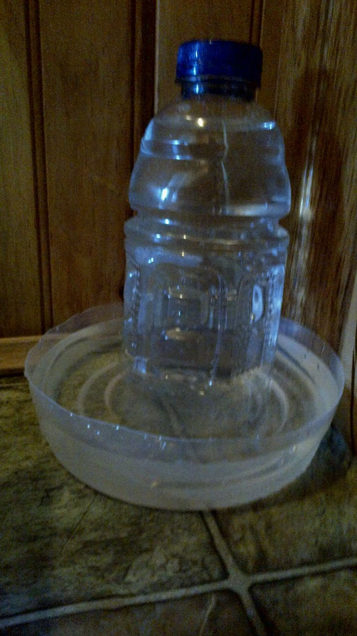 DIY Automatic Dog Waterer  Diy automatic cat watering bowlant and easy from