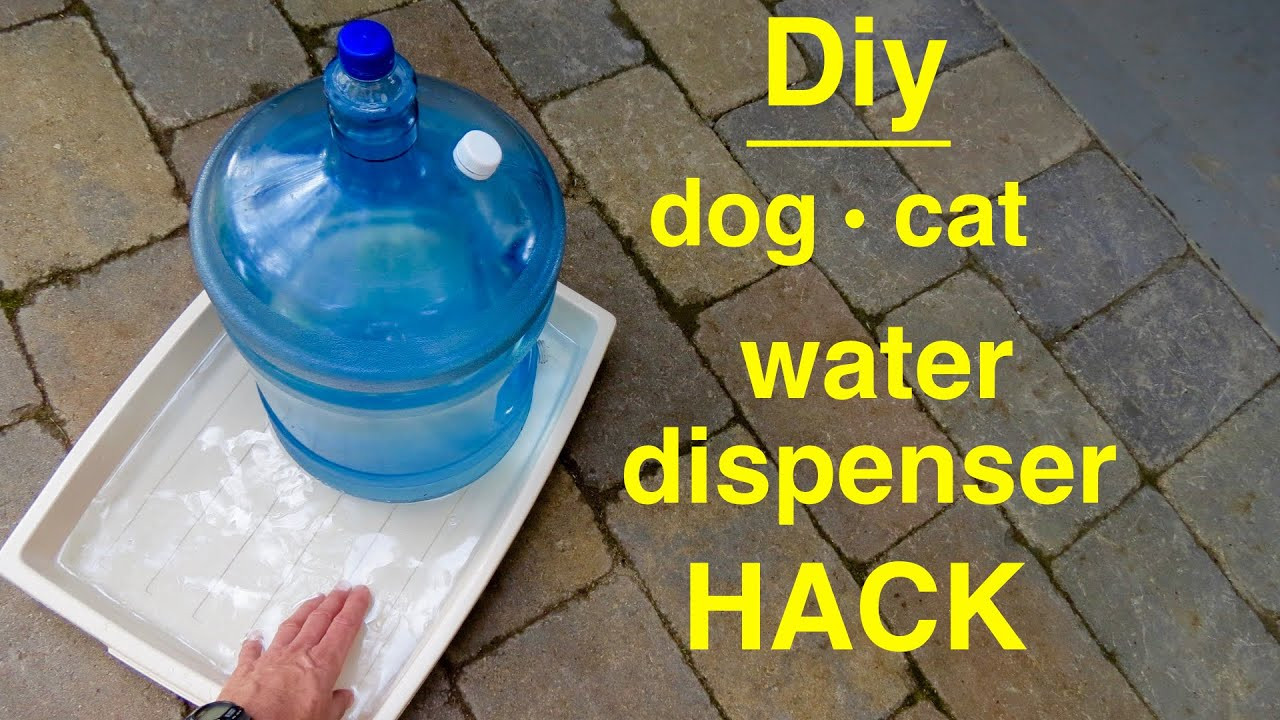 DIY Automatic Dog Waterer  How to make DOG CAT Self filling Water Dispenser