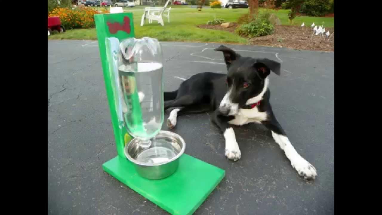 DIY Automatic Dog Waterer  Cómo hacer un recipiente bebedero que se autorellena