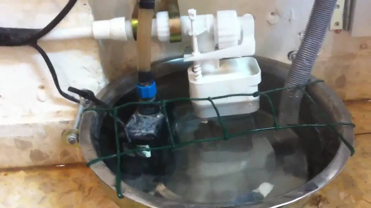 DIY Automatic Dog Waterer  For Lifehacker Automatic dog waterer