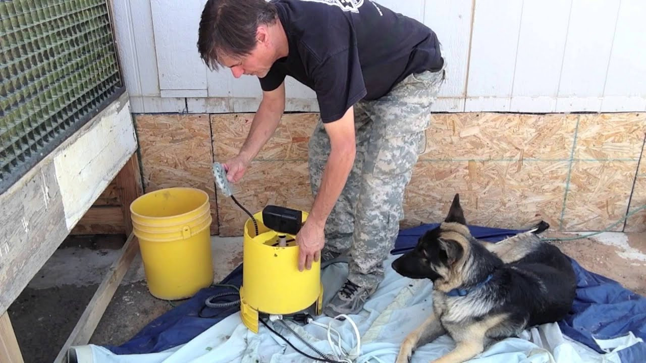 DIY Automatic Dog Waterer  DIY Circulating Dog Water Bowl