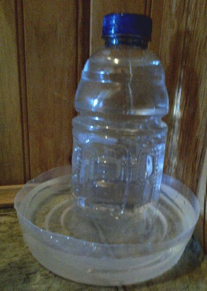 DIY Automatic Dog Waterer  DIY Plastic Bottle Water Dispenser PetDIYs