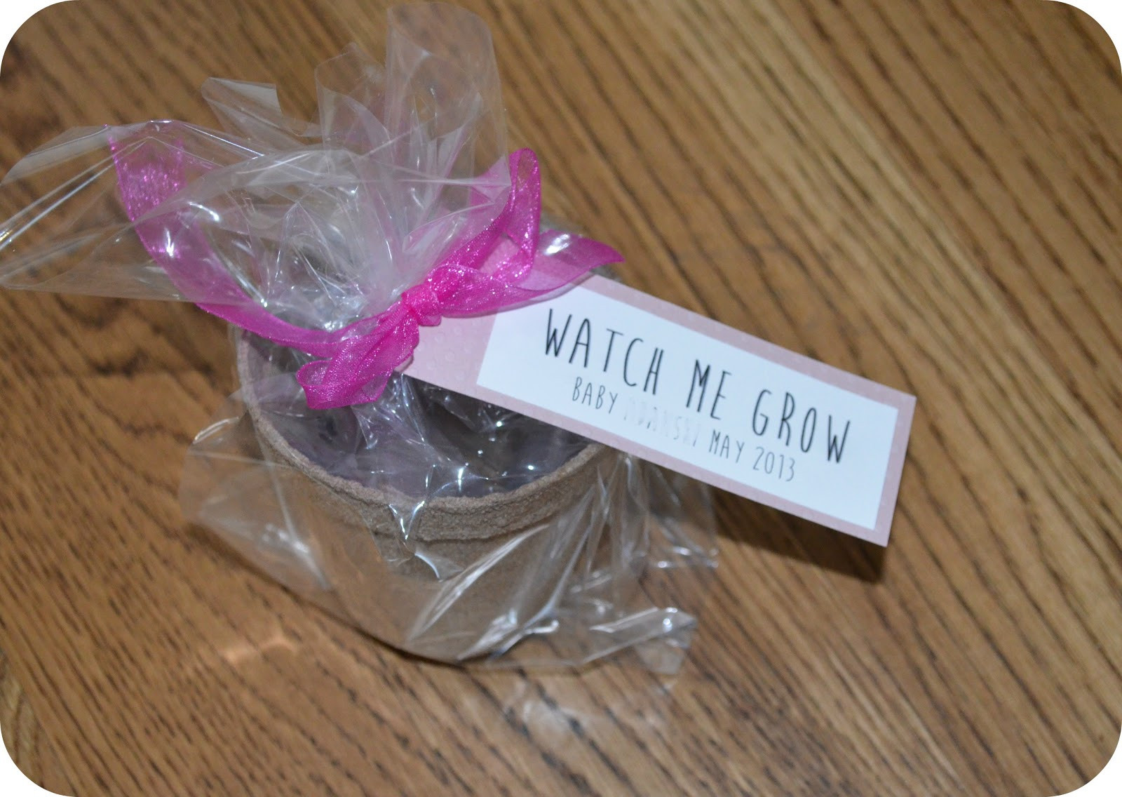 DIY Baby Shower Party Favors  Stay Blonde DIY Baby Shower Party Favors on a Bud
