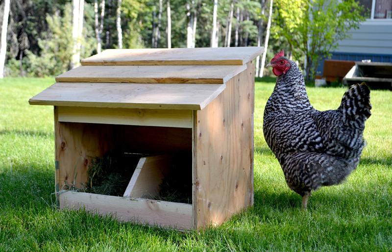 DIY Chicken Nest Box  8 Free Chicken Nesting Box Plans And Ideas