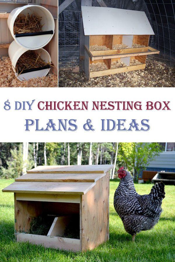 DIY Chicken Nest Box  25 best ideas about Chicken nesting boxes on Pinterest