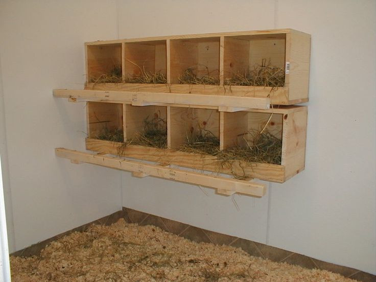 DIY Chicken Nest Box  Best 25 Chicken nesting boxes ideas on Pinterest