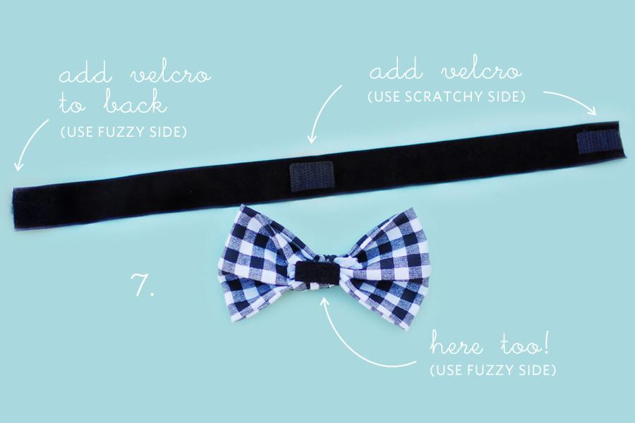 DIY Dog Bow Ties  DIY No Sew Wedding Bow Tie