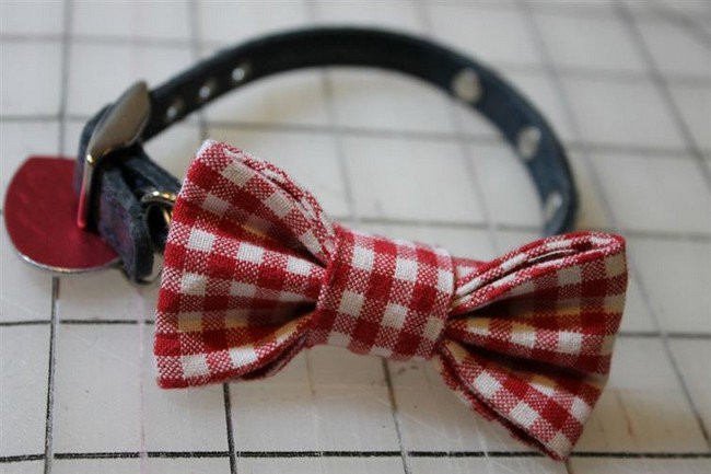 DIY Dog Bow Ties  16 Awesome DIY Dog Accessory Ideas You And Your Pooch Will