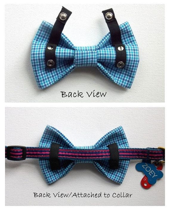 DIY Dog Bow Ties  25 best ideas about Bow tie groom on Pinterest