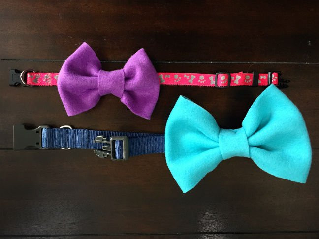 DIY Dog Bow Ties  DIY Collar Bows and Bow Ties for Dogs