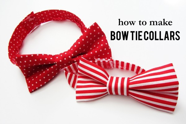 DIY Dog Bow Ties  How To Make AWESOME Bow Tie Collars For Your Dog