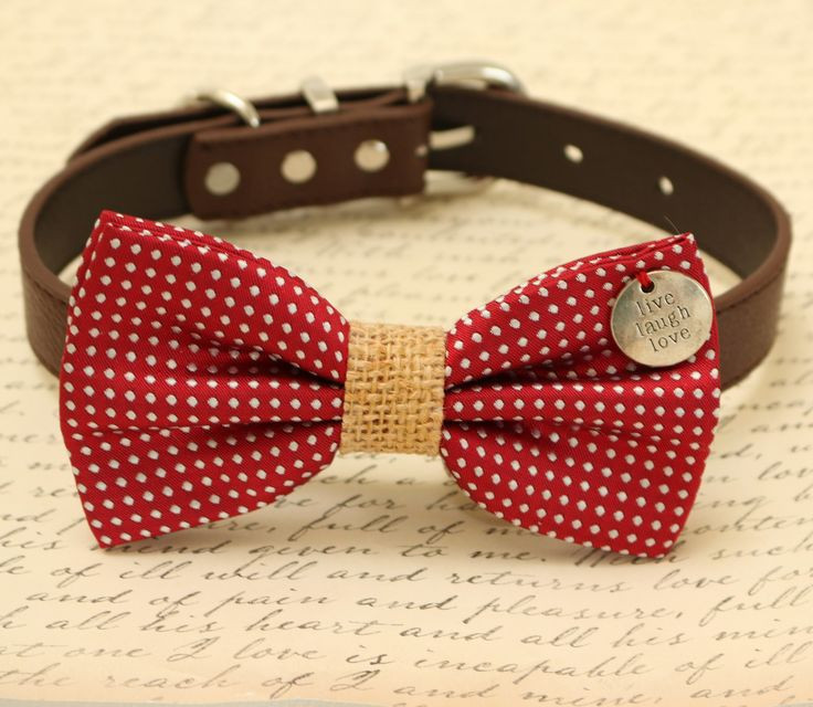 DIY Dog Bow Ties  25 best ideas about Dog bow ties on Pinterest
