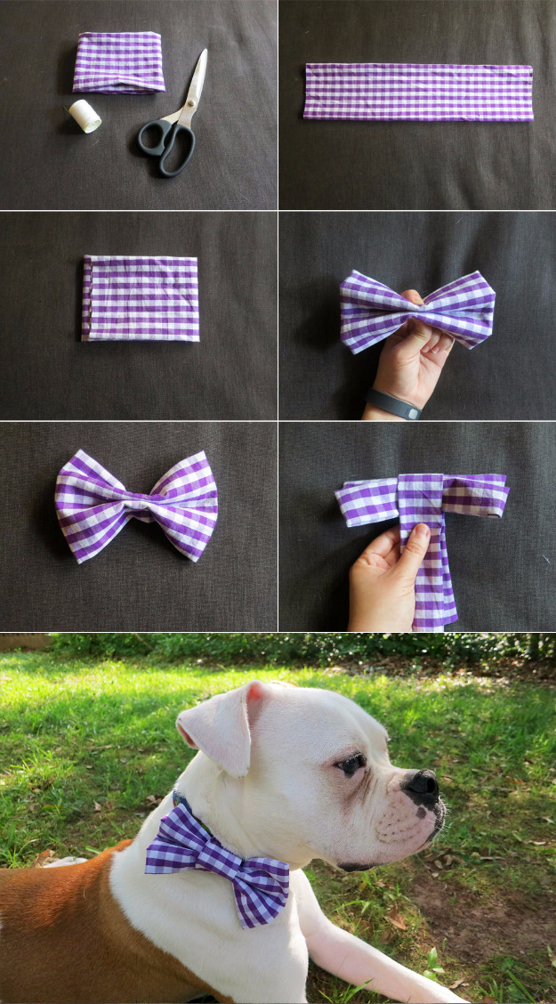 DIY Dog Bow Ties  33 Dog Hacks You Need To Try Today
