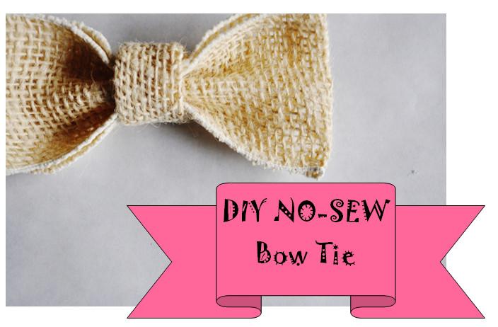 DIY Dog Bow Ties  DIY Puppy Dog Bow Tie No Sew