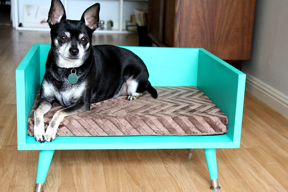 DIY Doggie Bed  DIY Mid Century Style Pet Bed with a Touch of Star Trek