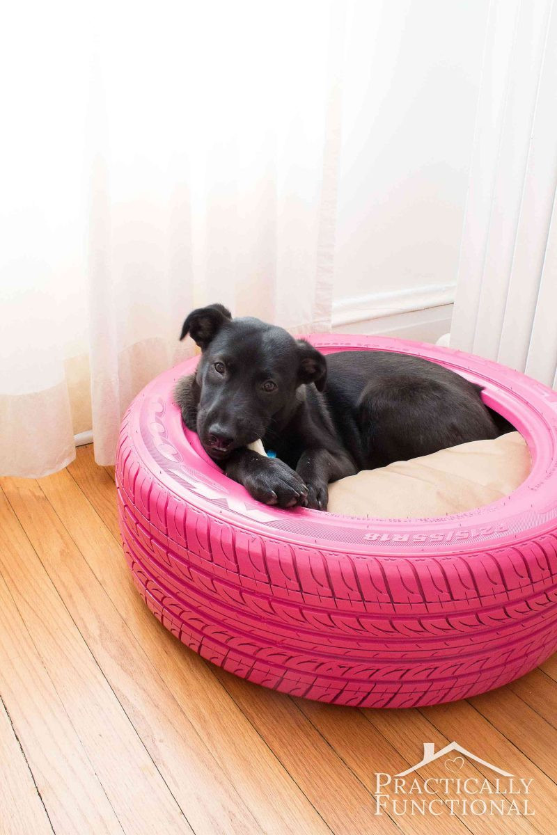 DIY Doggie Bed  DIY Dog Bed From A Recycled Tire
