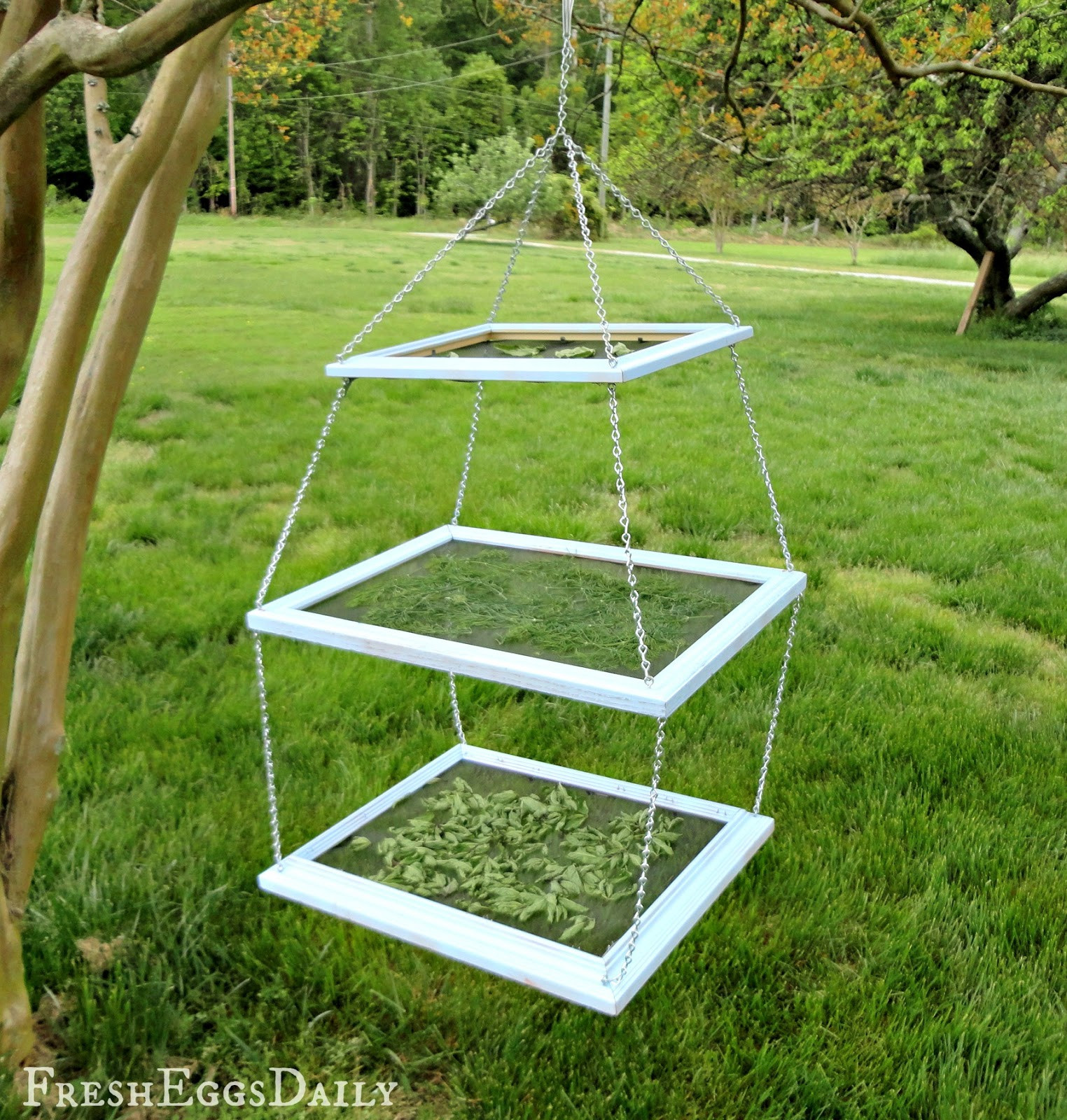 DIY Drying Rack  DIY Tiered Herb Drying Rack Using Repurposed Picture