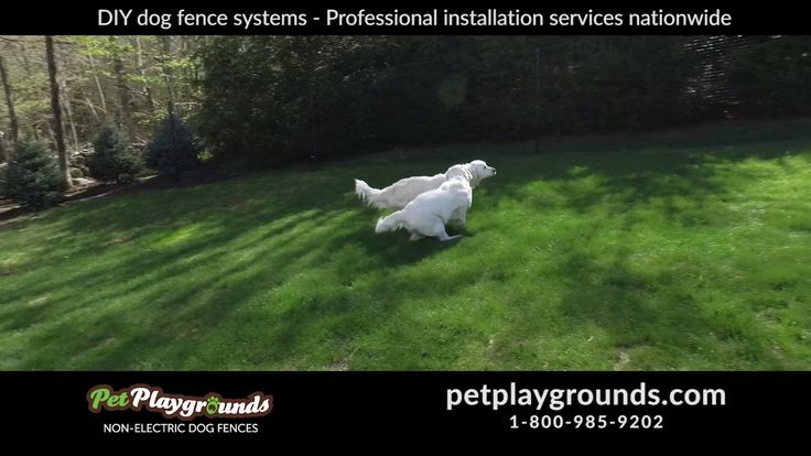 DIY Electric Dog Fence  Best 25 Dog fence ideas on Pinterest