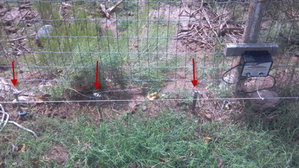 DIY Electric Dog Fence  DIY Electric Fence Hot Wire For Animals Part 1