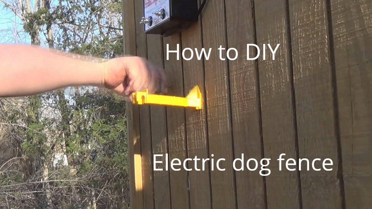 DIY Electric Dog Fence  how to make Electric Dog fence cheap