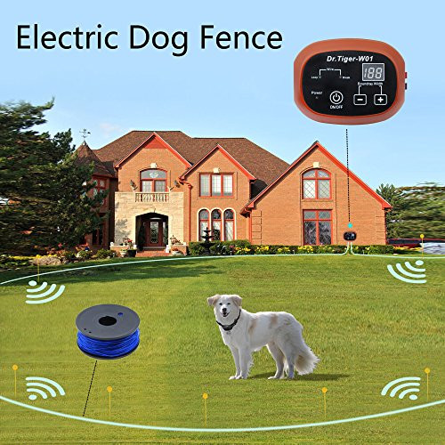 DIY Electric Dog Fence  2 Dog Electric Fence System In ground DIY Containment with