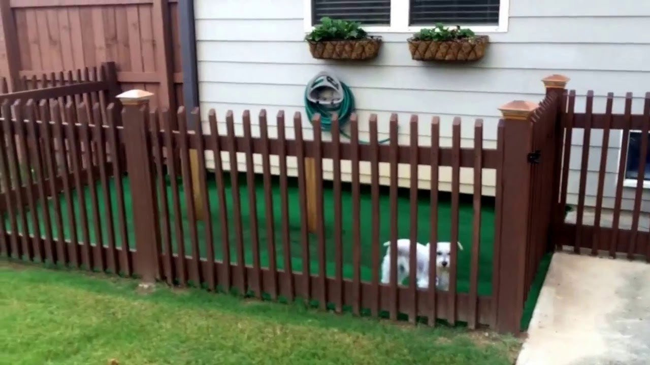 DIY Electric Dog Fence  Dog Fences For Outside Style — The Wooden Houses