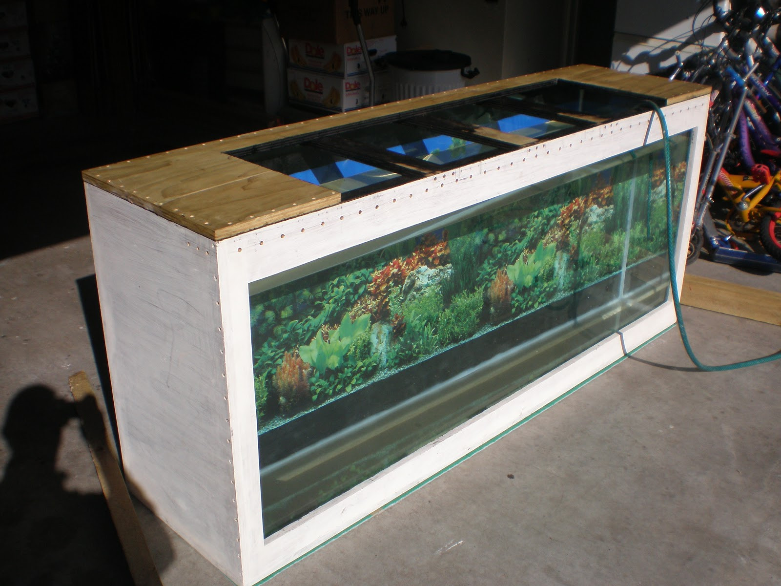 DIY Plywood Aquarium  DIY Plywood Aquarium DIY Plywood Aquarium