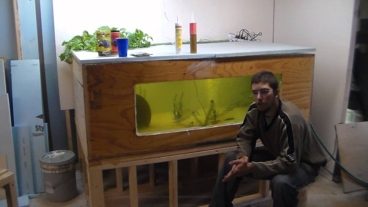 DIY Plywood Aquarium  300 Gallon Plywood Tank Build and Advice Cheapest