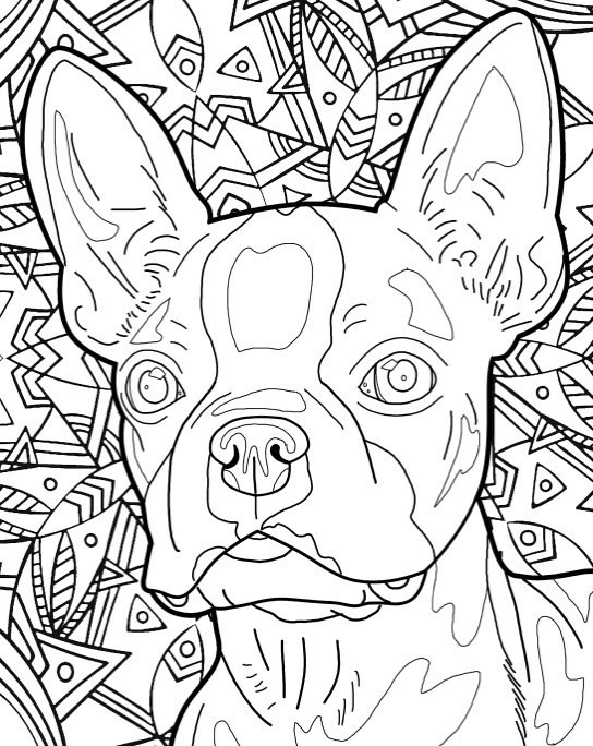 Dog Coloring Books For Adults  Best Coloring Books for Dog Lovers Cleverpedia